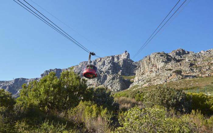 60 nuwe veiligheidsmonitors ontplooi in Tafelberg Nasionale Park - EWN