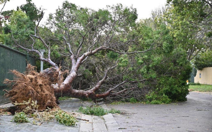 CoCT continues mop-up operations in areas hit by heavy storms - EWN