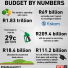 Budget 2019 in numbers