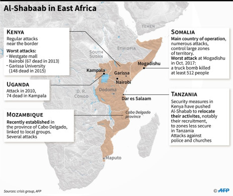 Countries where the al-Qaeda-linked al-Shabaab Islamist group has been active since 2010. Picture: AFP