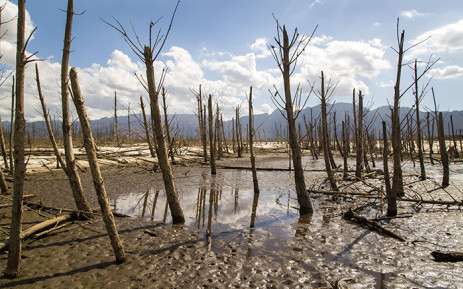 The water level of the Theewaterskloof Dam near Cape Town dropped to around 30 percent in March 2016. It is the largest of five major dams supplying drinking water to the city. Picture: Aletta Harrison/EWN