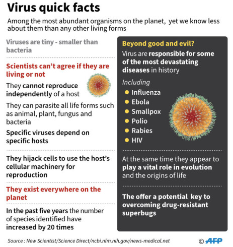 Is a virus living or not? Check out the fact file below on viruses, which are among the most abundant organisms on the planet. Picture: AFP