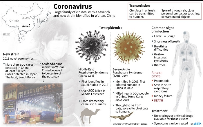 Factfile on the coronavirus family, which circulate in animals and can be transmitted to humans. A new strain of this virus has been identified in Wuhan, China. Picture: AFP