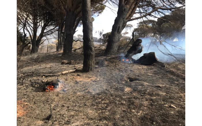 The slopes of Table Mountain surrounding UCT still smoulder after the fire on 18 April 2021. Picture: Lizell Persens/Eyewitness News