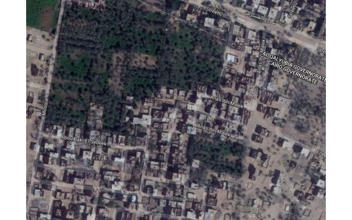 Cairo, Egypt. Not many lawns here.