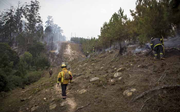 Volunteer ground crew in clean-up operations in one of Knysna's plantation forests. Picture: Thomas Holder/EWN.