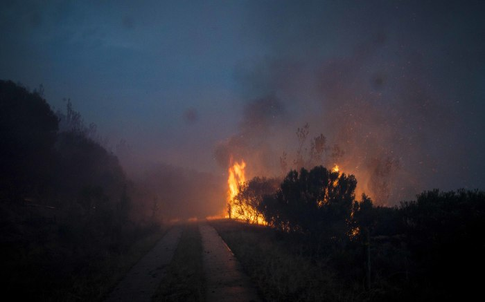 Fires spread on the forest slopes in Knysna.