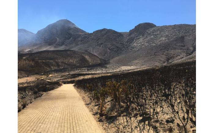 The Helderberg fire has damaged farm land, amounting to millions of rand.