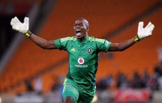 NPA confirms reports over its suspicion that witnesses in Meyiwa case lied