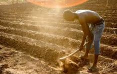 World Hunger Day: South Africa waste almost 30 percent of the food it produces