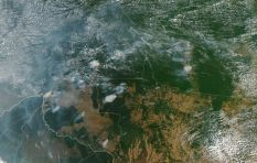 [VIDEOS] Amazon rainforest 'lungs of the world' burning at record rate