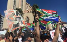 W Cape ANC Yonela Diko says anti-Zuma protests are opportunistic