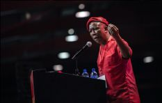 Julius Malema wants EFF to lead a 'United States of Africa'