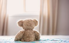 The science behind how childhood teddys or toys help put kids and adults at ease