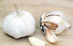 [WATCH] Internet blown away by best way ever to peel garlic!