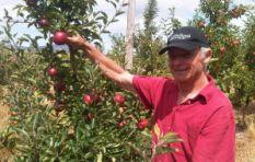 Tru-Cape makes a fruit discovery of a decade