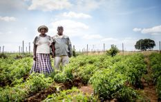 Aspiring social entrepreneurs create App to assist rural & urban farmers
