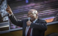 Court orders Jacob Zuma to say sorry to Hanekom over 'known enemy agent' tweet