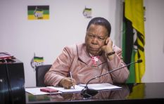 I think we should reconsider Bruce Koloane's appointment - Minister Pandor