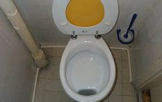 WATCH: Innovative spray limits toilet flushes and saves water