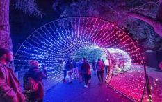 Garden of Lights event organiser must issue refunds, says WC consumer watchdog