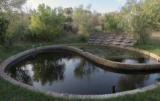 Spier Wine Estate's journey to water sustainability