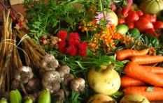 Passionate about organic foods and helping farmers