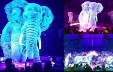 [WATCH] World's first holographic circus show aims to stop abuse of animals