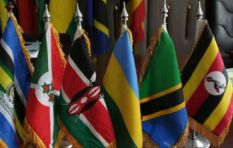 East Africa e-passports plan delayed until next year