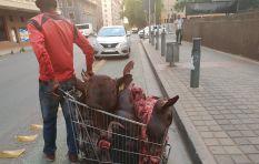 Callers debate Mashaba arresting a man wheeling cow heads in Joburg CBD