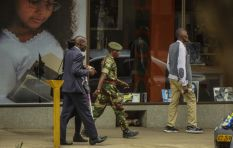 No evidence of Chinese influence on Zimbabwean 'coup' - expert