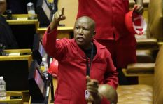 Malema reaches settlement with Mamabolo in defamation case
