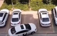 [WATCH] How many people does it take to park a car?