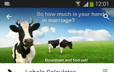 """It's Not About the Money, Money, Money"" - The Lobola Calculator"