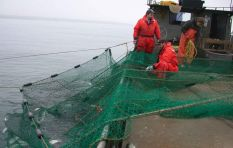 Conservation organisations team up to save non-target fish species