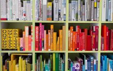 Are public libraries threatened by the internet age?