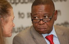 Nzimande: Treasury doesn't have the money for free education
