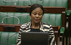 Malema labels Mkhwebane a spy