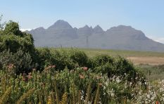 10 safety tips from Sanparks following latest robbery at Table Mountain camp
