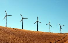 Approval for Inyanda Roodeplaat Wind Farm set aside