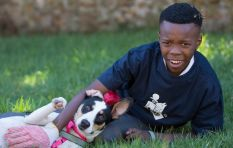 The Underdog Project takes dual approach to helping teens and shelter dogs