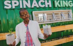 Broadening the taste of Khayelitsha's spinach revolution