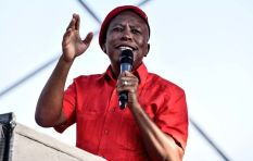 Daily Maverick exposé shows 'Malema's slush fund' doesn't have records
