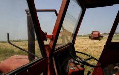 MEC visits Tarlton community following murder of farmworker