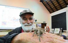 [LISTEN] The best way to remove a rain spider nest around your house