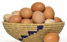 #EggInflation: Have you noticed how expensive eggs have become?