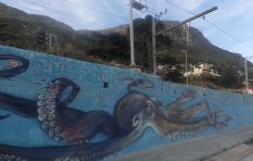 St James Beach local sea-life  wall murals delight Capetonians