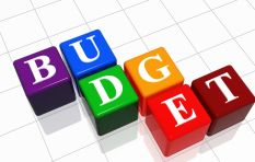 """5 reasons why """"faulty"""" and """"flawed"""" Budget 2015 will harm the SA economy"""