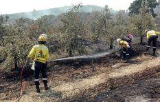 Somerset West fires under control