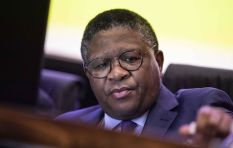 AfriForum lays criminal complaint against Fikile Mbalula